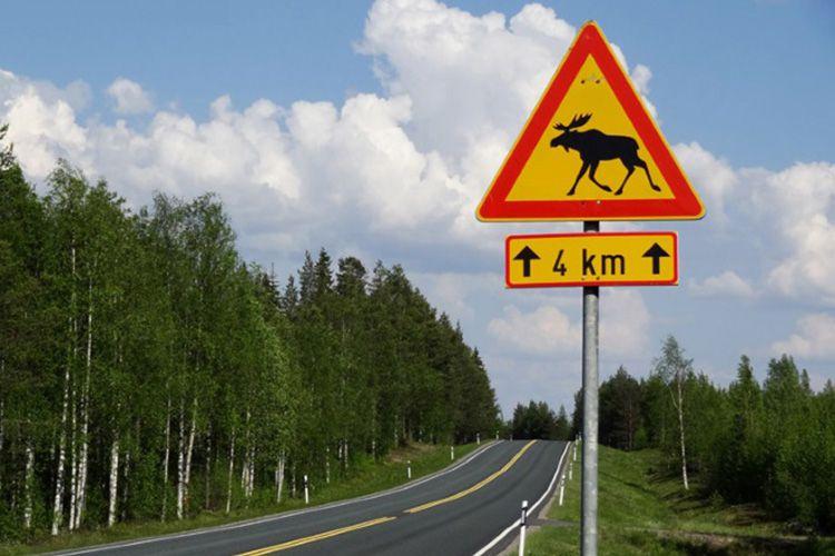 Есть ли штраф скорость по финляндии как узнать