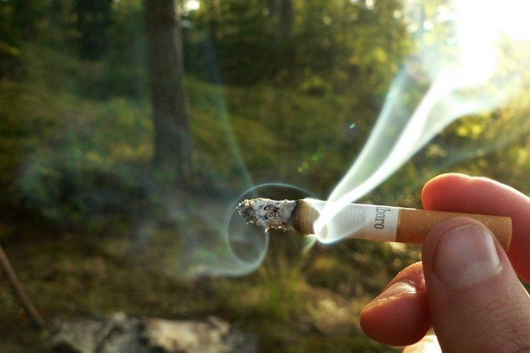 Как купить сигареты в финляндии петербург сигареты оптом